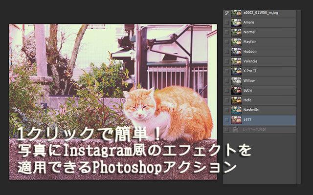 160418_cat88_top